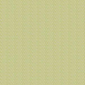 9479303 SNOW CONE Kiwi Fabricut Fabric