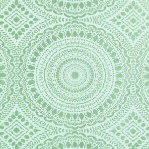 15655-601 MERMOZ Aqua Green Duralee Fabric