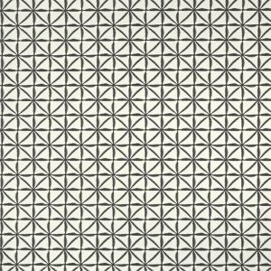 F1014-2 NUSA Charcoal Clarke & Clarke Fabric