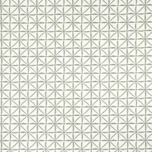 F1014-7 NUSA Smoke Clarke & Clarke Fabric