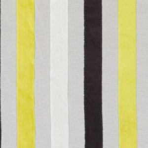 SV15877-711 HAMILTON Black Gold Duralee Fabric