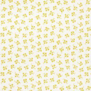177841 NOSE GAY Curry Schumacher Fabric