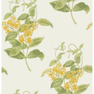 100/12059-CS MADRAS VIOLET Yellow Cole & Son Wallpaper