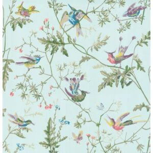 100/14069-CS HUMMINGBIRDS Blue Multi-Colour Cole & Son Wallpaper