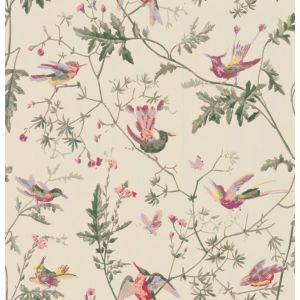 100/14071-CS HUMMINGBIRDS Original Multi-Colour Cole & Son Wallpaper