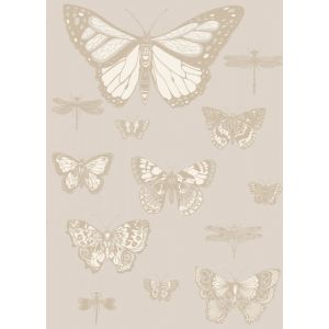 103/15064-CS BUTTERFLIES & DRAGONFLIES Grey Cole & Son Wallpaper