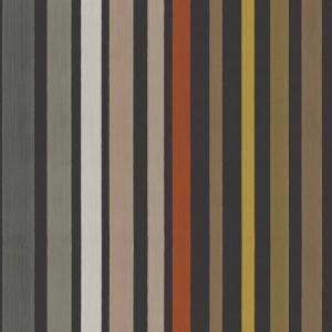 108/6031-CS CAROUSEL STRIPE Charcoal Cole & Son Wallpaper