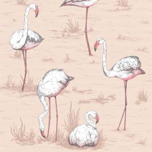 112/11039-CS FLAMINGOS Plaster Pink Cole & Son Wallpaper