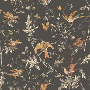 112/4017-CS HUMMINGBIRDS Charcoal Ginger Cole & Son Wallpaper