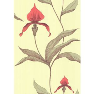 66/4033-CS ORCHID Lime Or Cole & Son Wallpaper