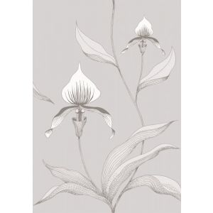 95/10055-CS ORCHID Grey White Cole & Son Wallpaper