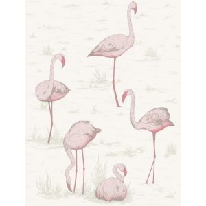 95/8045-CS FLAMINGOS Pink White Cole & Son Wallpaper