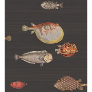 97/10048-CS ACQUARIO Black Mult Cole & Son Wallpaper