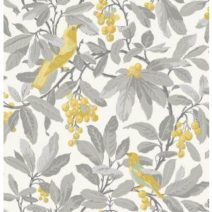 98/1003-CS ROYAL GARDEN Grey Yellow Cole & Son Wallpaper
