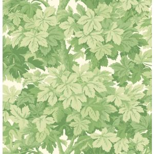 98/10045-CS GREAT VINE Leaf Green Cole & Son Wallpaper