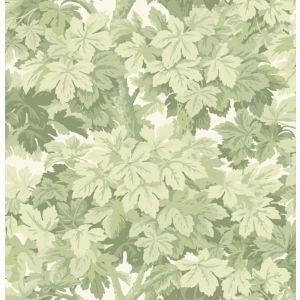 98/10046-CS GREAT VINE Olive Cole & Son Wallpaper