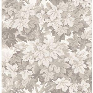 98/10047-CS GREAT VINE Stone Cole & Son Wallpaper