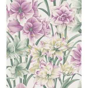 98/6024-CS EXOTICKS Green Purple Cole & Son Wallpaper