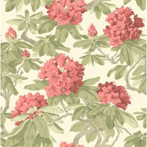 99/4020-CS BOURLIE Coral Cole & Son Wallpaper