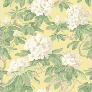 99/4021-CS BOURLIE Pale Lemon Cole & Son Wallpaper