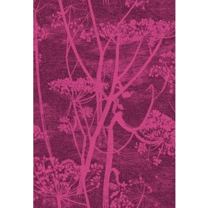 F111/5017-CS COW PARSLEY Magenta Cole & Son Fabric