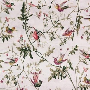 F62/1001-CS HUMMINGBIRDS Classic Multi Cole & Son Fabric