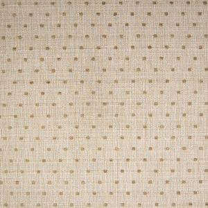 A6283 Beach Greenhouse Fabric