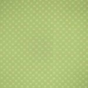 A8648 Meadow Greenhouse Fabric