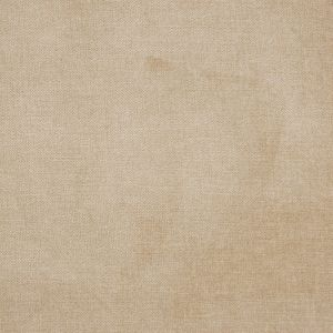 B1257 Neutral Greenhouse Fabric