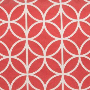 B2779 Bittersweet Greenhouse Fabric
