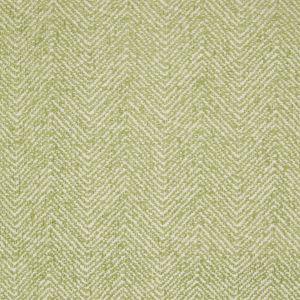 B2797 Keylime Greenhouse Fabric