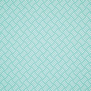 B3038 Turquoise Greenhouse Fabric