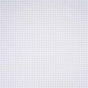 B3244 Platinum Greenhouse Fabric