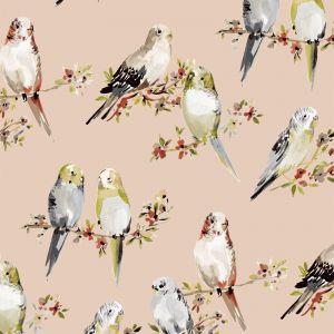 B9592 Satin Greenhouse Fabric
