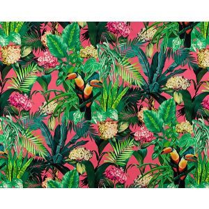 A9 0003BLOM BLOOMING Paradise Pink Scalamandre Fabric