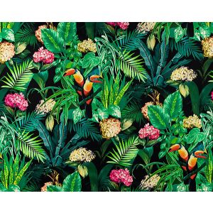 A9 0004BLOM BLOOMING Night Bloom Scalamandre Fabric