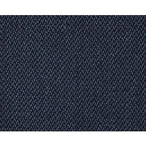 CH 04114304 UNIVERSO Sailor Scalamandre Fabric