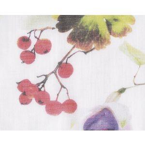 CH 07084417 SOMMERWIND CS Summer Bouquet Scalamandre Fabric