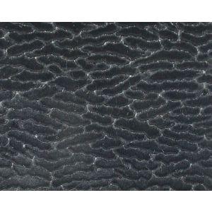 CL 002636407 ERACLE GOFFRATO Nero Scalamandre Fabric