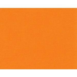 H0 00010531 FIDJI Abricot Scalamandre Fabric