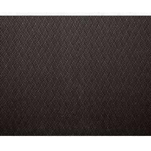 H0 00040568 VACOA Fusain Scalamandre Fabric