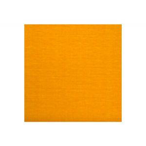 H0 00051502 VELOURS UNI Topaze Scalamandre Fabric