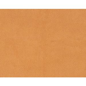 H0 00110533 WESTERN Antilope Scalamandre Fabric