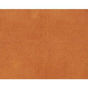 H0 00120533 WESTERN Cognac Scalamandre Fabric