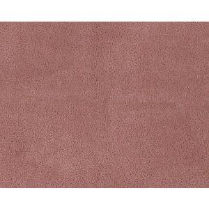H0 00160533 WESTERN Bruyere Scalamandre Fabric