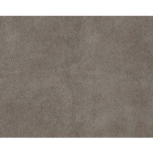H0 00180533 WESTERN Elephant Scalamandre Fabric