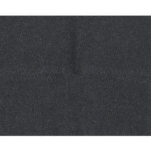 H0 00190533 WESTERN Noir Scalamandre Fabric