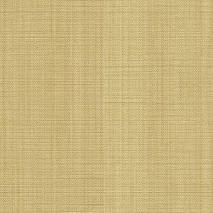 2013114-16 SWEET GRASS Beige Lee Jofa Fabric