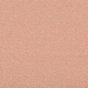 31516-117 ACCOLADE Shell Kravet Fabric