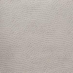 DELANEY-11 Kravet Fabric